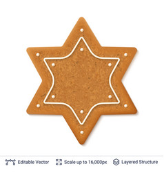 gingerbread cookie isolated on white vector image