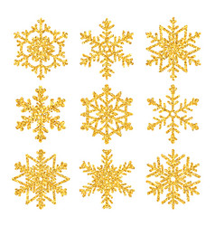 sparkling golden snowflake set with glitter vector image