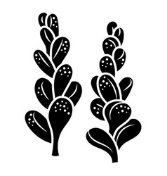 Succulent branch icon simple style vector