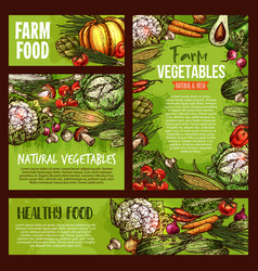 Vegetables veggie farm food sketch posters vector