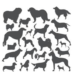 Dog icon set Heatlh care vet nutrition exhibition vector image