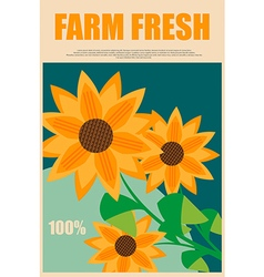 Sunflowers in advertising fresh farm products vector image vector image