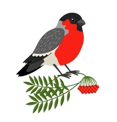 Bullfinch Christmas Bird vector image