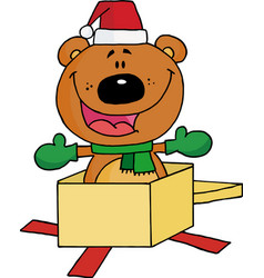 Bear Popping Out Of A Gift Box vector image