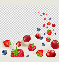 berry borders with transparent background vector image