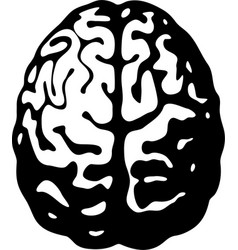 black and white human brain in top view vector image