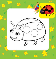 Bug coloring page vector