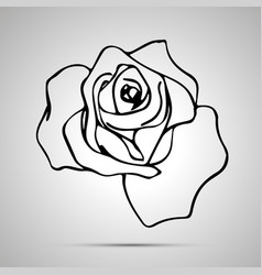cute outline rose simple black icon vector image
