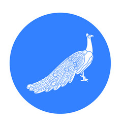 Peacock icon in black style isolated on white vector