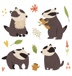 set cute forest badger characters design vector image