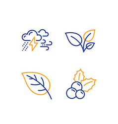 Leaves leaf and bad weather icons set christmas vector