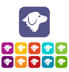 Retriever dog icons set vector