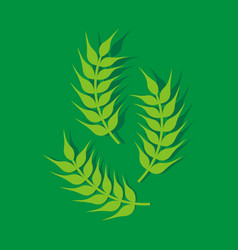 Wheat paddy logo vector