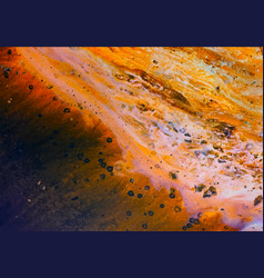 abstract images from acrylic paint splashed vector image
