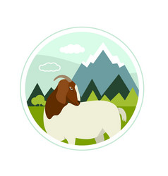 farming today a boer goat grazing on alpine vector image