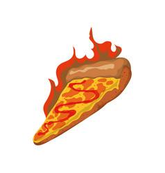 Pizza slice spicy sauce vector