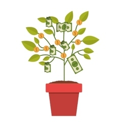 Pot of plant with dollars and coins vector