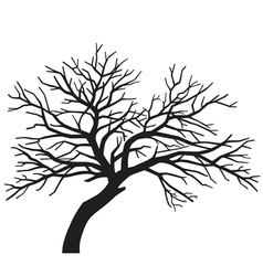 scary bare black tree silhouette vector image