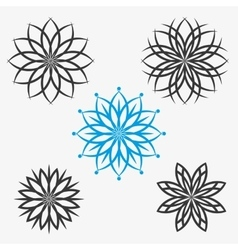 Set of elements flowers or snowflakes vector