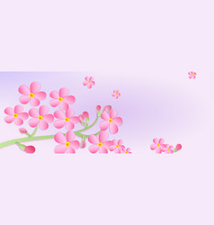 Banner with a branch cherry blossoms vector