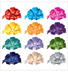 Big set of gift bows with ribbons vector image