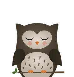 cute owl woodland forest animal vector image