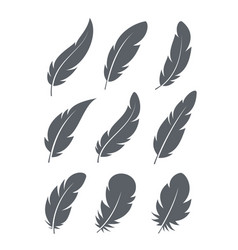feathers icons set vector image