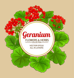geranium frame vector image