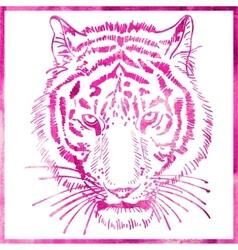 Head of tiger is in a watercolor artwork in pink vector