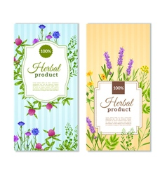 Herbs And Wild Flowers Banners vector image