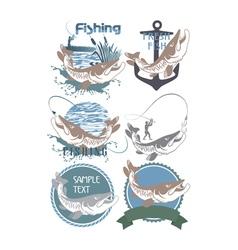 pike fish logo vector image