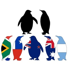 Penguin flags vector image