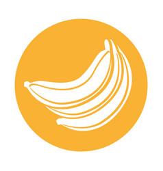 Banana fresh fruit icon vector
