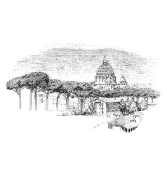 Dome of st peters from the janiculan vintage vector