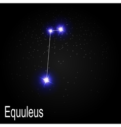 Equuleus Constellation with Beautiful Bright Stars vector image