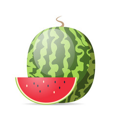 fresh juicy watermelon icon tasty ripe fruit vector image