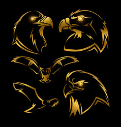 Golden eagle hawk mascots set vector