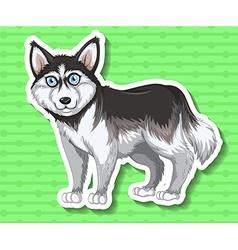 Little puppy syberian husky vector
