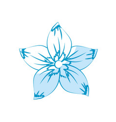 Rustic flower with natural petals vector