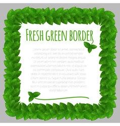 Fresh leaves green frame template vector image