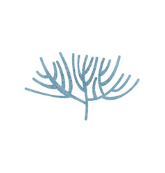 Blue branching coral ocean flora tropical vector