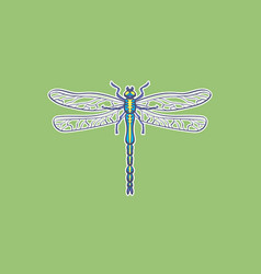 dragonfly in vector image