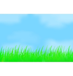 Green grass against the misty sky vector