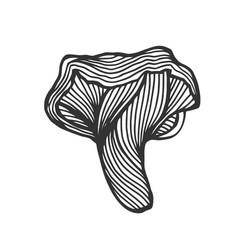 hand drawn magic mushroom vector image