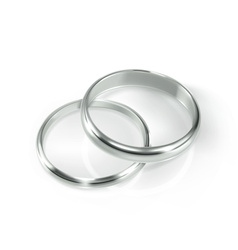 Pair of silver wedding rings vector