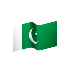 pakistan flag vector image