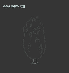 Yew tree icon line element of vector