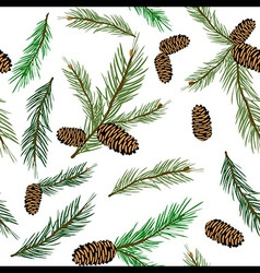 seamless pattern with pinecone branch Pine cone vector image vector image
