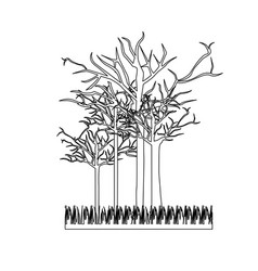 figure leafless trees icon vector image
