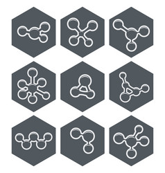 abstract molecule icons design vector image